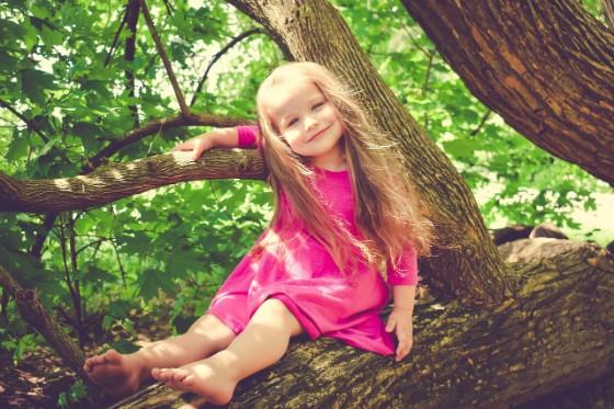 木の上に座ってこちらを見ている少女