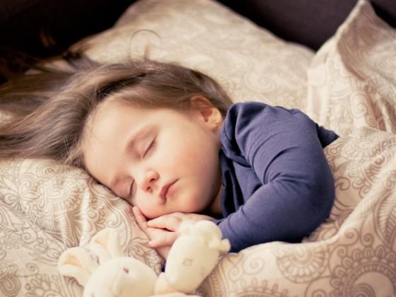 2歳くらいの子供がぬいぐるみと一緒に布団で眠っている